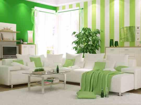 11-green-interior-dop