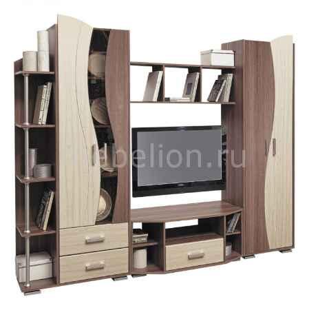 Купить Олимп-мебель Глория-1 ясень шимо темный/клен азия