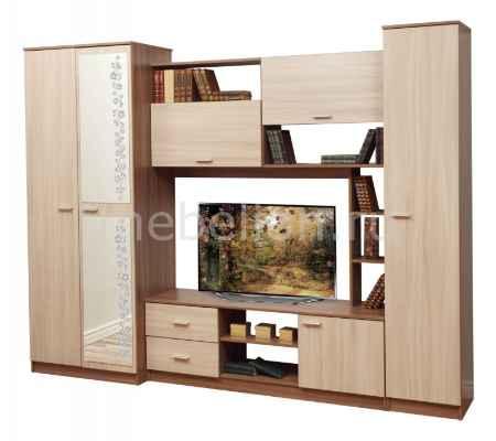 Купить Олимп-мебель Глория-6 ясень шимо темный/ясень шимо светлый