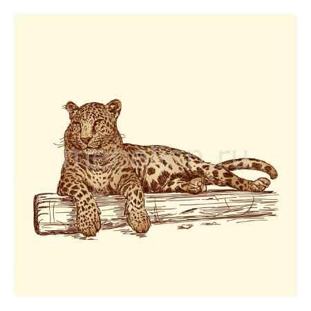 Купить Mebelson Галерея Леопард
